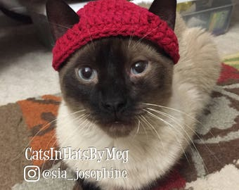 Handmade Crochet Apple Hat for Cats