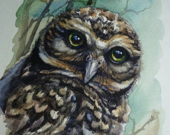 """Bird painting ORIGINAL watercolor Owl art Owlet wildlife birds  8x12"""" A4 framed 300gsm professional paper signed by Lana Arkhi"""
