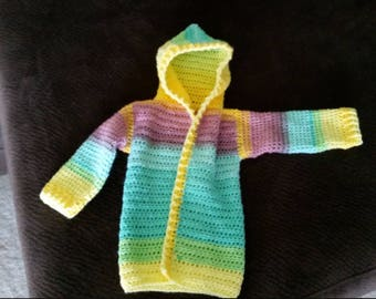 Child Size Hoodie (2T/3T)