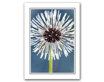 Dandelion Photo Note card, Flower art card, Nature thank you card, Blue