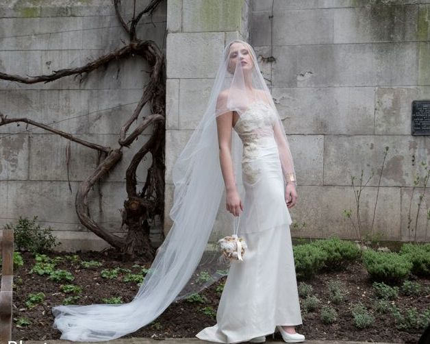 Off White Veil Wedding Veil Simple Veil bridal veil Ivory