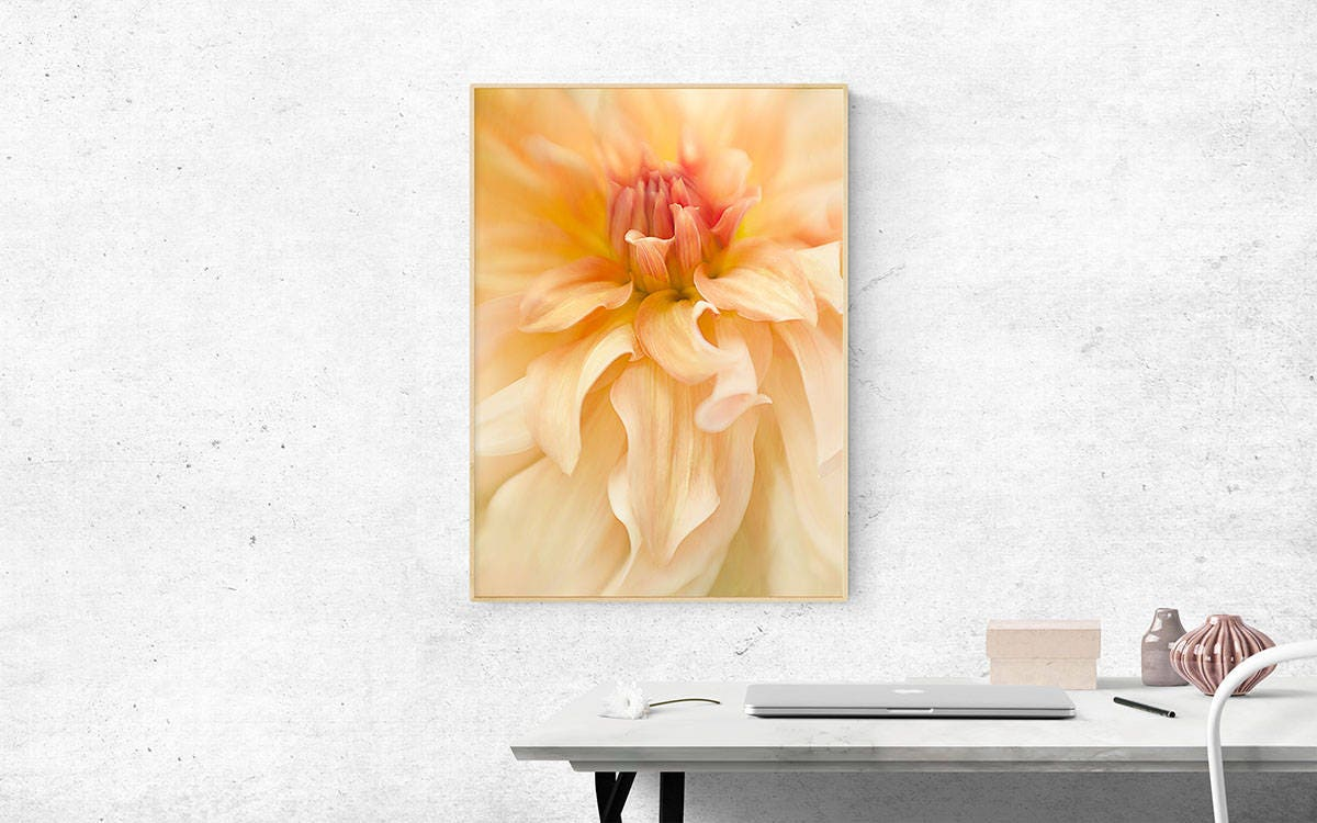 Dahlia Flower Photography Floral Wall Decor Print Girl\'s