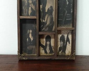 Elvira Mod.1  Cabinet of curiosities