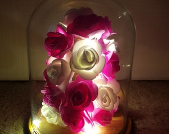 Pink and white rose light