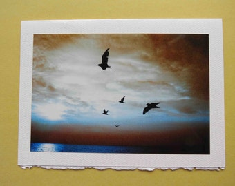 Blank Photo Card 5x7 On a Wing and a Prayer