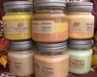 8 SOY CANDLES - Choice - Vanilla, Cinnamon, Apple, Pumpkin, Fresh, Clean, Citrus, Floral, Fruit, Spice, Herbal - Soy Candle Gift Pack