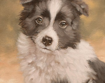Border Collie Puppy. ORIGINAL OIL Painting By Award Winning British Artist John Silver. B.A.