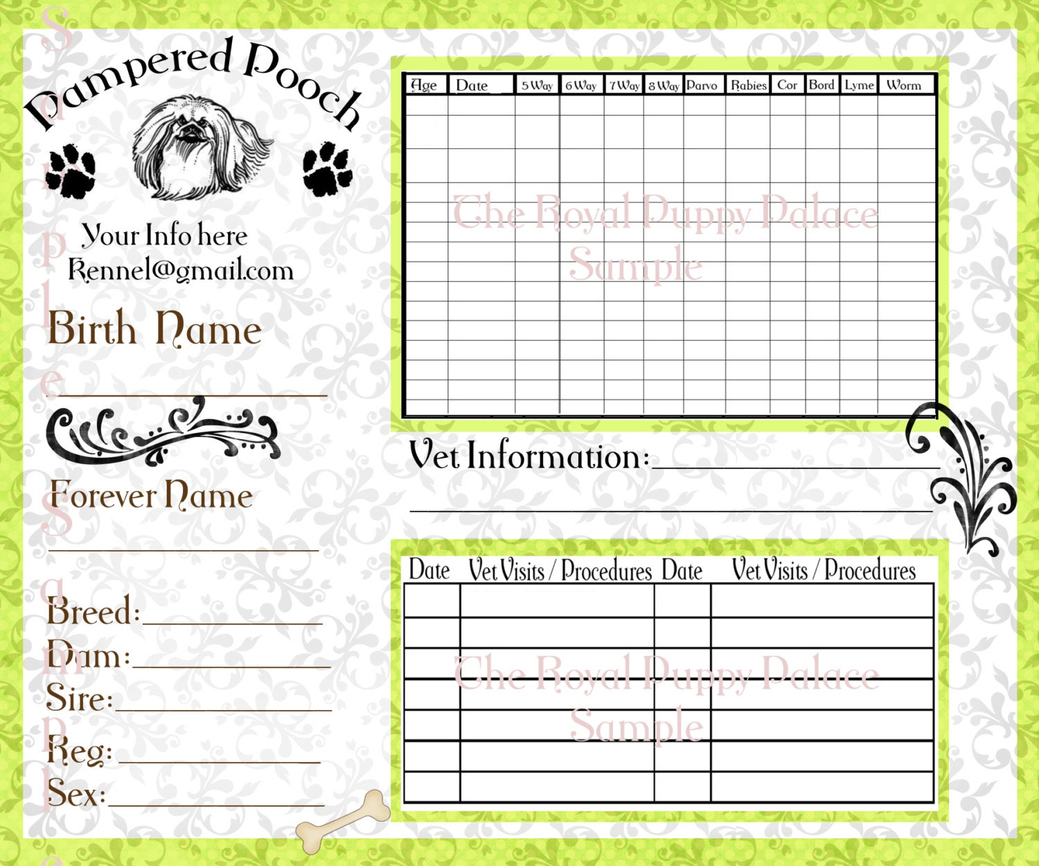 This is a picture of Modest Printable Dog Vaccination Record