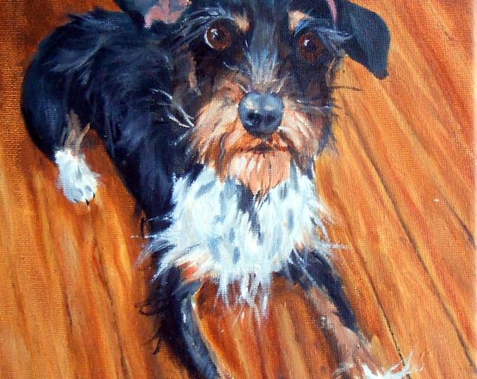 Pet Portrait Painter Near Me