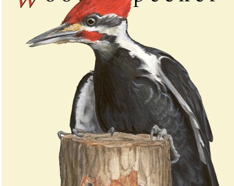 Pileated Woodpecker Notecard