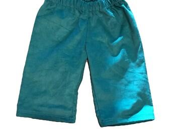 Boys 3t teal corduroy Shorts