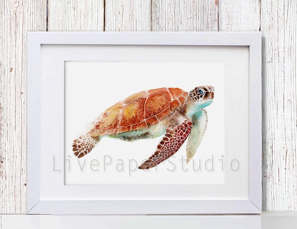Arte de tortuga tortugas marinas acuarela casa de playa
