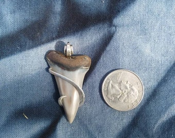 Sterling Shark Tooth Pendant