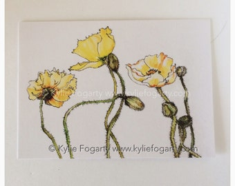 ACEO, Poppy Pod and Flowers, Summer Flowers, Fine Art Print, Yellow Poppies