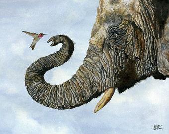 Art Print. Elephant Cyril And Hummingbird Ayre