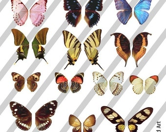 Digital Collage Sheet Wings (Sheet no. W3) Instant Download