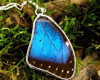 Real Blue Morpho Butterfly Wing Reversible Pendant Necklace Sterling Silver Chain Nature's Reliquaries Collection
