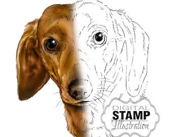 Dachshund Art, Dog Digital Stamp, Dog Art Digital Download, Digital Scrapbooking Supplies
