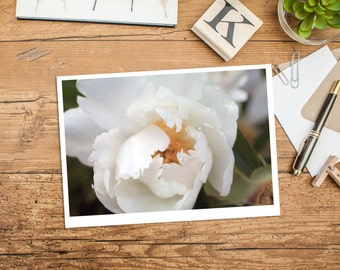 Peony Photo Notecard, Blank Greeting Card, Photo Greeting Card, Floral Card, Note Card, Floral Photo Notecard, Blank Stationery