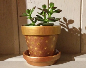 Hand painted gold and bronze terracotta plant pot