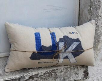 Hometown University of Kentucky Pillow
