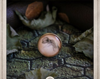 DILOPHOSAURUS ring adjustable cabochon 20mm dinosaur dino plucked jurassic park BGCB004 woman