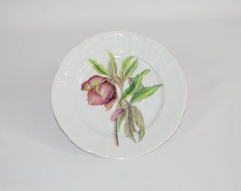 "Angelique 7"" white salad  plate (shown with image #f48 - hellebore flower)"