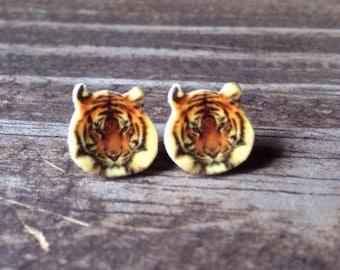 Tiger earrings jewelry big cat feline striped