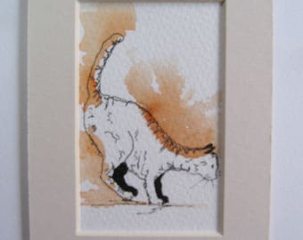 Jumping Cat, Art Cards, Editions & Collectables, Pen and Wash, Cat, Orange,