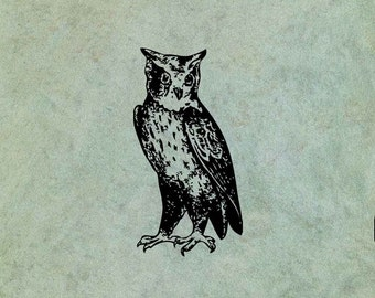 Owl - Antique Style Clear Stamp
