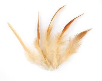 x 10 natural 13 to 16cm (68F) beige Brown pheasant feather