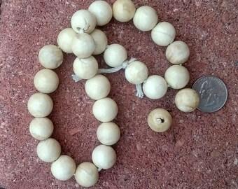 Naga Shell Beads 14-15mm
