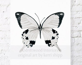 Butterfly in Black and White Watercolor Print 11x14 - 'The Monarchist' - Butterfly Print Wall Art