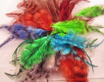100 assorted saddle  feathers grizzly Dyed 2 to 3 inches craft feathers fly-tying crafts