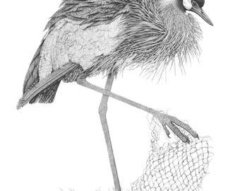 ORIGINAL Crowned Crane, bird illustration, migratory bird drawing, pen and ink, pointillism art, stippling, original art work, Uganda bird