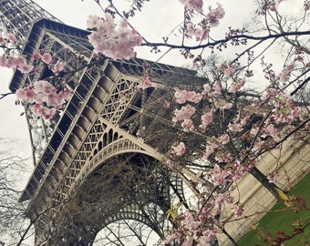 Paris at Springtime Eiffel Tower 8x10 Print