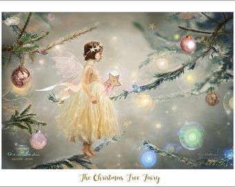 NEW -  The Christmas Tree Fairy - By Charlotte Bird