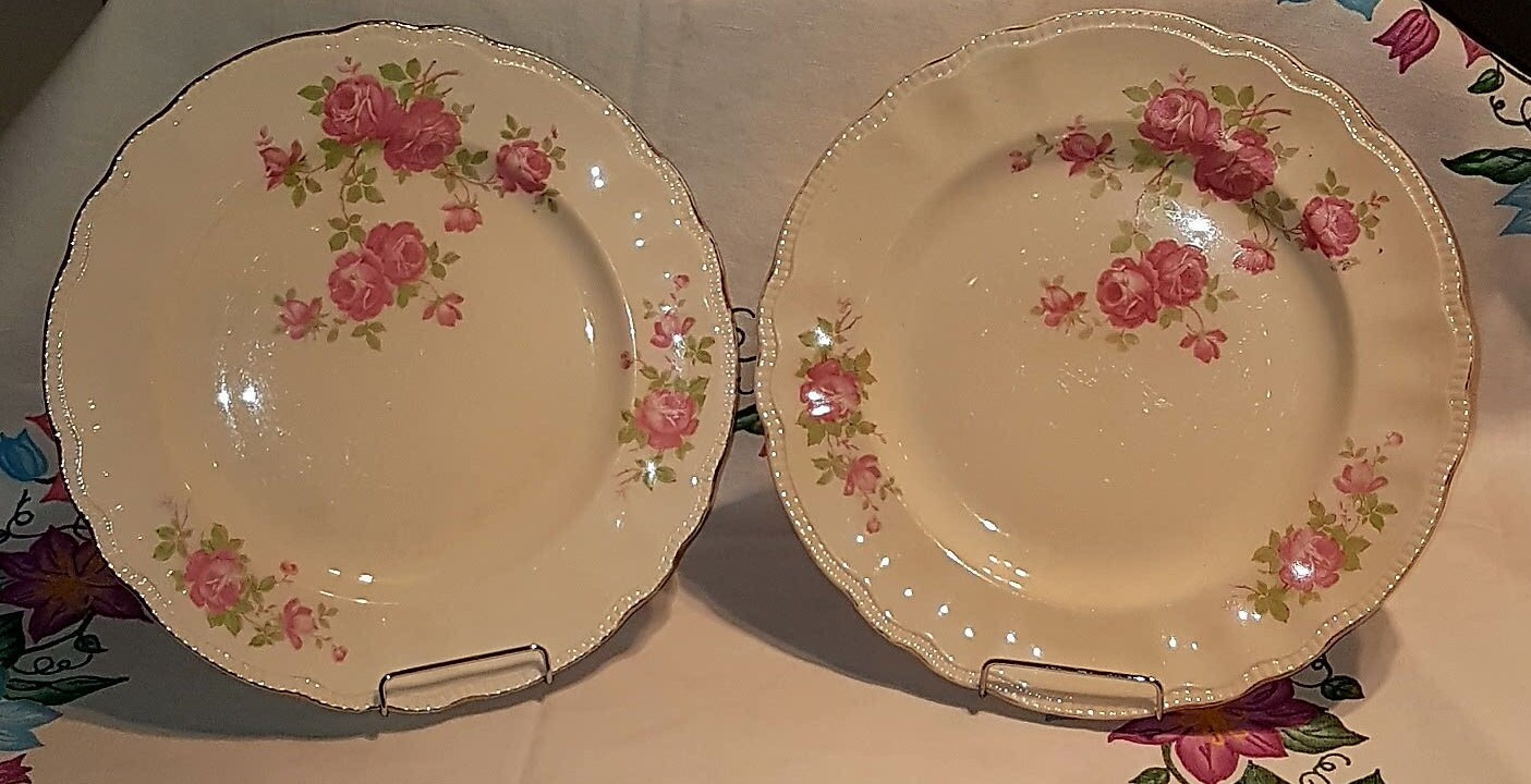 Set of 2 - Vintage British Empire Ware DEVON ROSE 10  Dinner Plates 1930u0027s & Set of 2 - Vintage British Empire Ware DEVON ROSE 10 Dinner Plates ...
