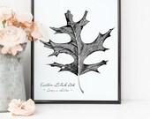 Black Oak Tree Leaf Print...