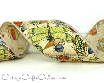 "Wired Ribbon, 2 1/2, Dragonfly and Bug Print - THREE YARDS - ""Bug's Day"" , Fall, Spring Craft Wire Edged Ribbon"