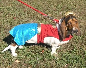 Dog Halloween Costume-Wonder Women