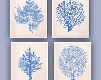 Nautical prints Sea Coral fan prints,  modern vintage inspired  by coral, kelp, gorgonian, seaweed, seashore prints,set of 4 prints 8x10,