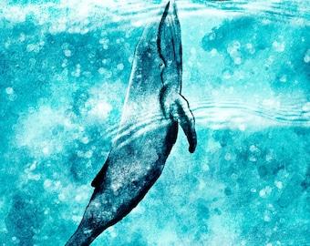 Address book Whale
