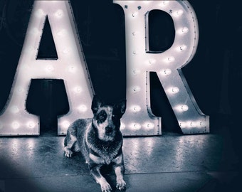 marquee letter marquee sign lighted metal marquee sign. Black Bedroom Furniture Sets. Home Design Ideas