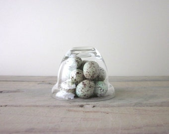 Small Vintage Glass Cloche Bell Jar Dome