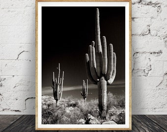 Cactus Print Black and White Photography, Cactus Photo Wall Art, Large Poster, Printable Download, Southwestern Decor, Modern Minimalist