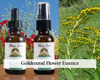 Goldenrod Flower Essence, 1 oz Dropper or Spray for Being True to Yourself in the Face of Peer Pressure or Societal Expectations