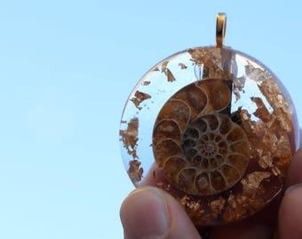 Ammonite Fossil Pendant: Ammonite Shell, 24K Gold
