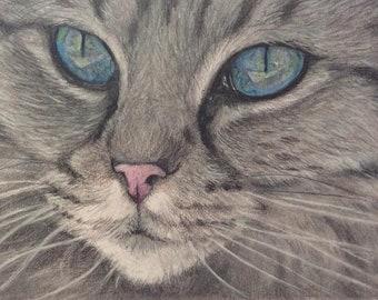 Original drawing - Realistic blue eyes cat