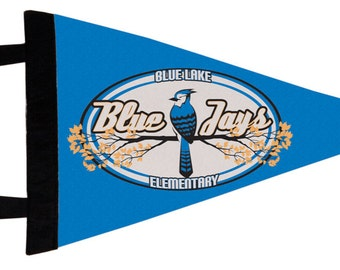 Custom Pennant Flag - MADE with YOUR DESIGN!